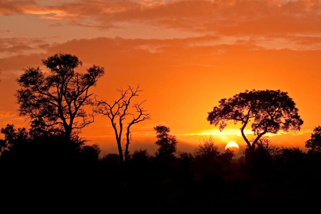 Aperitif au coucher du soleil